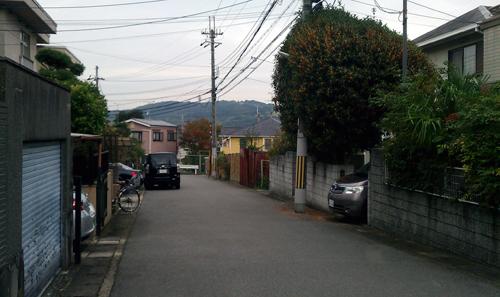 10-29醍醐-6a