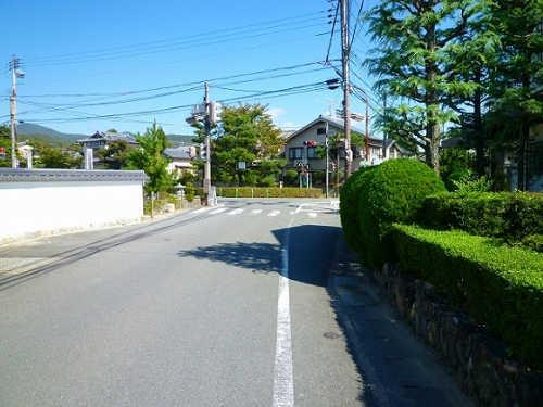 11-24嵯峨大覚寺-4