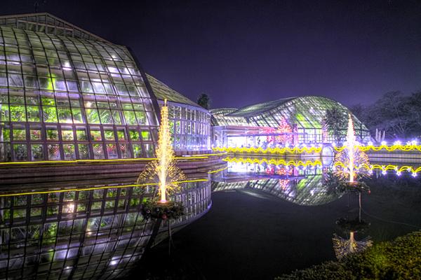6-26京都府立植物園-3