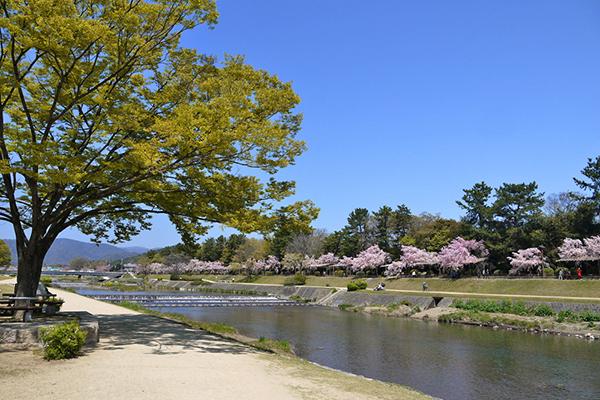 6-26加茂川河川敷公園-2