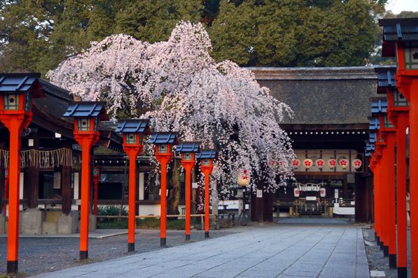 平野神社収益-5
